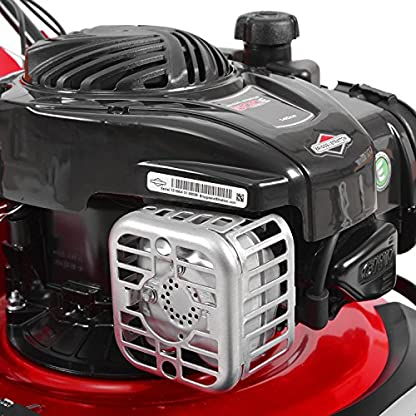HECHT-Benzin-Rasenmher-5494-SB-Briggs-Stratton-Benzin-Mher-29-kW-40-PS-Schnittbreite-46-cm-60-Liter-Fangkorbvolumen-7-fache-Schnitthhenverstellung-25-75-mm-Radantrieb