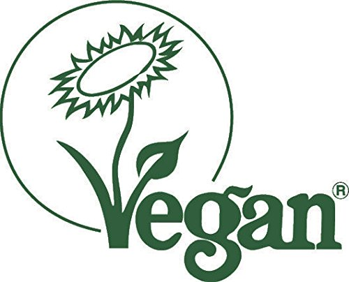 BodyMe Bio Vegan Protein Pulver Mischung | Roh Zimt | 1Kg | UNGESÜßT mit 3 Pflanze Proteine