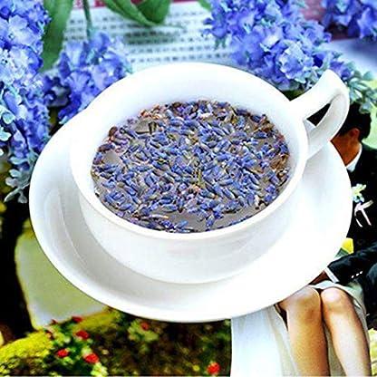50g-011LB-Lavendel-getrocknete-Blume-Tee-chinesische-Kruter-gut-fr-Schlaf-Krutertee-duftenden-Tee-Botanischer-Tee-Kruter-Tee-Grner-Tee-Roh-Tee-Blumen-Tee-Gesundheit-Tee-Chinesischer-Tee