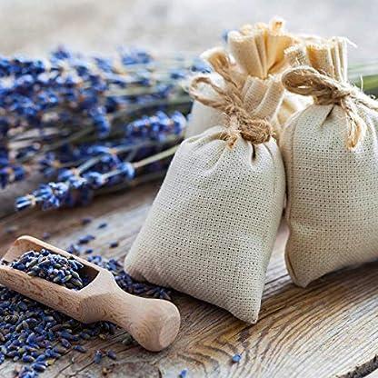 NaturaForte-Lavendelblten-500g-Lavendel-ohne-Zustze-Blulich-Intensiver-Duft-Getrocknete-Lavendel-Blten-Fr-Duftkissen-Lavendeltee-oder-Lavendelsckchen-Potpourri-Duft