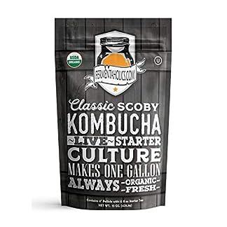 Fermentaholics-Scoby-Mit-zwlf-Unzen-Starter-Tee-Live-Starter-Kultur-macht-Eineinhalb-Tassen-Starter-Tea-One-Gallon-Batch-Kombucha