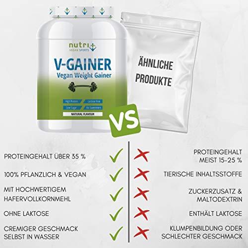 WEIGHT GAINER Neutral ohne Süßstoff & Zucker   V-GAINER 2 kg   Masseaufbau & Zunehmen   ohne Maltodextrin & Zusatzstoffe   2000g vegan   36,2% Eiweiß   hergestellt in Deutschland