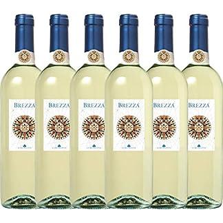 6er-Weinpaket-Weiwein-Brezza-Bianco-2018-Lungarotti-mit-VINELLOweinausgieer-trockener-Weiwein-italienischer-Sommerwein-aus-Umbrien-6-x-075-Liter