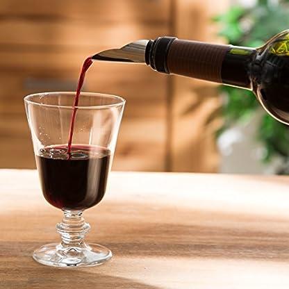 Levivo-Weinausgieer-aus-Edelstahl