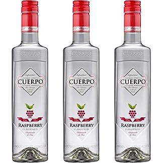 CUERPO-Raspberry-Likr-3-x-07-l