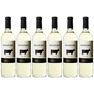 Wein-Probierpaket-Argentinien-Trocken-6-x-075-l