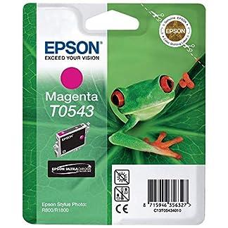 Epson-DURABrite-Tintenpatrone