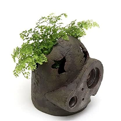Castle-In-The-Sky-Robot-Soldier-Planter