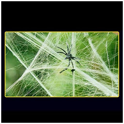 Ndier-Halloween-Stretch-Spinnennetze-Indoor-Outdoor-Spuk-Spinnennetz-mit-2-Geflschte-Spinnen-fr-Halloween-Dekorationen-Wei-1-STCKE