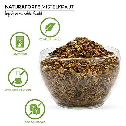 NaturaForte-Mistelkraut-geschnitten-1kg-Misteltee-Bltter-schonend-getrocknet-Mistel-Kraut-und-Blten-im-Beutel-fr-Tee-aus-kontrolliertem-Anbau-Mistelkraut-in-Arzneimittel-Qualitt