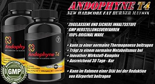ANDOPHYNE-T4   90 Kapseln für 30 Tage Anwendung   THERMO-EFFEKT   Natürliche Unterstützung für die Gewichtsreduktion für Männer und Frauen, effektiv und schnell abnehmen   Premium Qualität