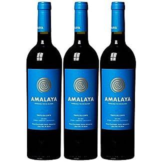 Amalaya-Tinto-de-Corte-Valle-Calchaqu-Salta-20152016-3-x-075-l