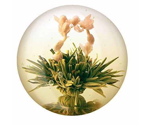 6-Teeblumen-Geschenk-Box-Grntee-Variationen-originelle-Geschenk-Idee-zum-Geburtstag-oder-Muttertag-oder-als-kleine-Aufmerksamkeit-fr-zwischendurch-Teeblten-