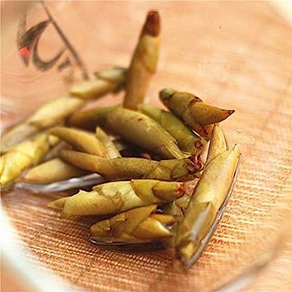 Bacillus-Spores-Wilder-weier-Tee-250g-055LB-Wilde-Bume-Frhlings-Knospe-Roher-Tee-Weier-Tee-Alter-Baum-Natrlicher-organischer-Nahrungsmitteltee-Grnes-Nahrungsmittel-Roher-Tee-Chinesischer-Tee