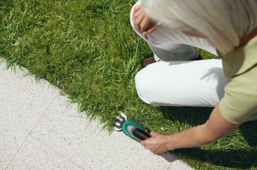 Bosch-Isio-Set-Akku-Grasschere-Grasscherenblatt-Strauchscherenmesser-Ladegert-36-V-8-cm-Messerbreite