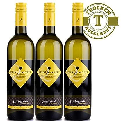 Weiwein-sterreich-Weingut-Sommer-Chardonnay-2015-trocken-3-x-075l-VERSANDKOSTENFREI