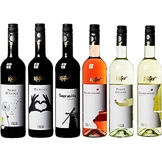 Feinkost-Kfer-Weinpaket-Europa-6-x-075-l