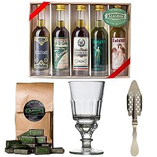 Absinth-Set-mit-edlem-Absinth-Glas-Lffel-und-Zucker-5-x-50ml-Perfektes-Starter-Set-aber-auch-super-als-Geschenk