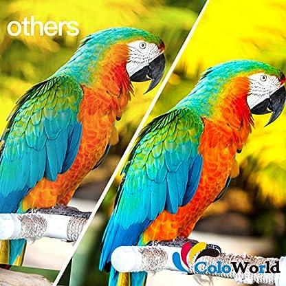 ColoWorld-62XL-Wiederaufbereitet-Ersatz-fr-HP-62XL-fr-OfficeJet-250-200-5740-5742-Envy-7640-5646-5540-5640-5545-5541-5544-Drucker-1-Schwarz-1-Farbe