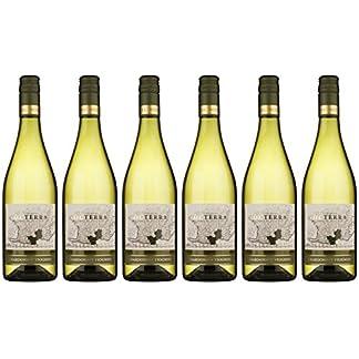 Octerra-IGP-Pays-dOc-Chardonnay-6-x-075-l