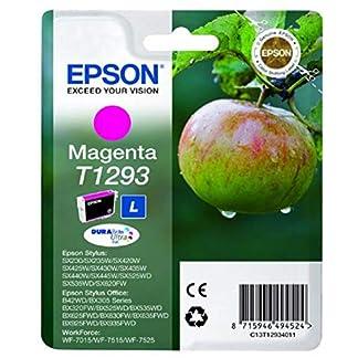 Epson-Tinte-Apfel-wisch-und-wasserfeste