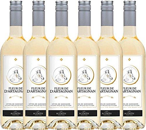 6er-Paket-Fleur-de-dArtagnan-Blanc-2017-Plaimont-trockener-Weiwein-franzsischer-Sommerwein-aus-Sud-Ouest-6-x-075-Liter