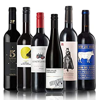 GEILE-WEINE-Weinpaket-Rotwein-trocken-6-x-075-Probierpaket-mit-Rotweinen-von-Winzern-aus-Deutschland-Spanien-Portugal-und-Frankreich