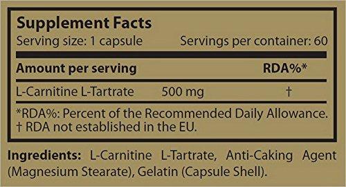 Scitec Nutrition Carni-X L-Carnitin Fettverlust-System 60 Kapseln