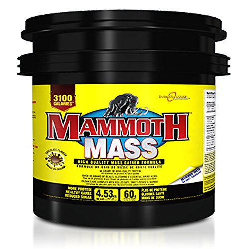 Interactive Nutrition Mammoth Mass (10lbs) Vanilla Ice Cream, 4535 g