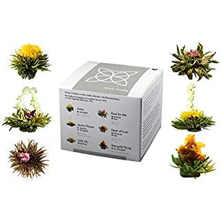 Feelino-Edle-6er-Mischbox-Teeblumen-white-in-toller-Probier-und-Geschenkbox-mit-6-verschiedenen-Weitee-Teerosen-einzeln-vakuumverpackt-1er-Pack