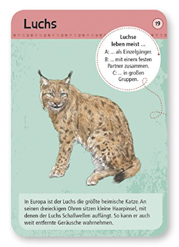 moses-Expedition-Natur-50-heimische-Wald-und-Wildtiere-Bestimmungskarten-im-Set-Mit-spannenden-Quizfragen