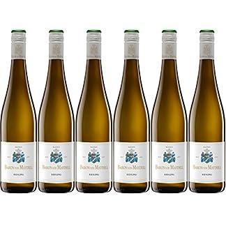 Baron-von-Maydell-Qualittswein-Riesling-Trocken-aus-Baden-2016-6-x-075-l