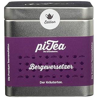 Pi-Tea-Bergeversetzer-Dose-Krutertee-Teestation-natrlich-und-vegan-2er-Pack-2-x-50-g