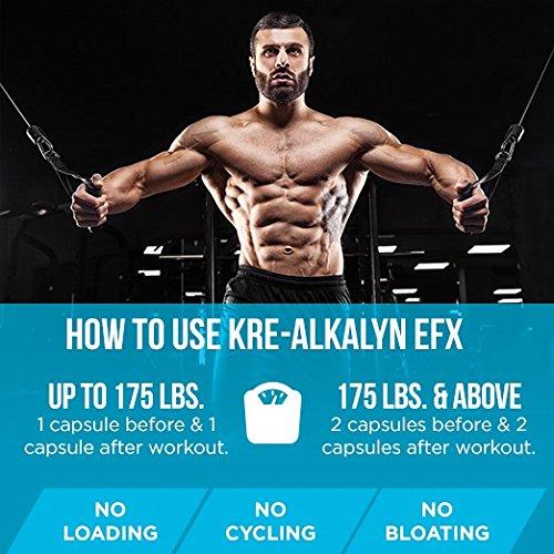 EFX Kre-Alkalyn 3000 – 260 Kapseln, 1er Pack (1 x 249 g)