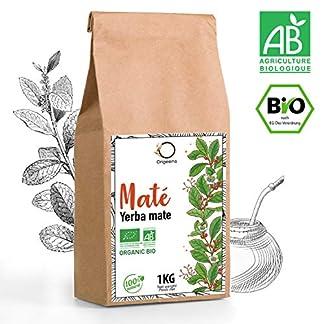-BIO-YERBA-MATE-1-KG-Grner-Mate-Tee-Bltter-Ungerstet-ohne-Stngel-und-nicht-pulvrig-Energie-und-Detox-Getrnk