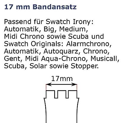Original-Swatch-Irony-Big-Ersatzarmband-HOARY-Medium-AYGS7001AM-17-mm-Bandansatz