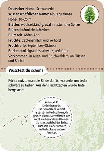 moses-Expedition-Natur-50-heimische-Bume-Bestimmungskarten-im-Set-Mit-spannenden-Quizfragen