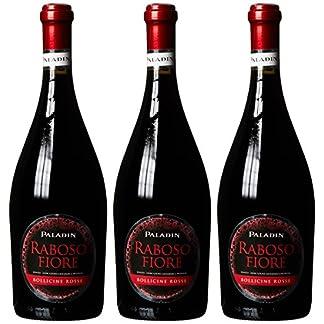 Paladin-Raboso-Fiore-frizzante-rosso-2013-trocken-3-x-075-l