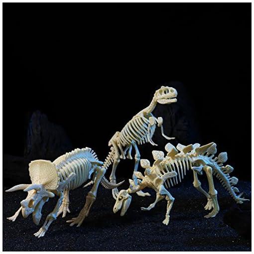 NUOLUX-NUOLUX-4D-Dinosaurier-Fossil-Skeleton-Sortiert-Dinosaurier-Spielzeug-DIY-3-Stcke-Dino-Knochen-Fossilien-Fr-Kinder-Jungen-Mdchen