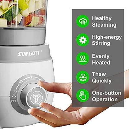SUMGOTT-Babynahrungszubereiter-4-in-1-Babynahrung-Dampfgarer-und-Mixer-mit-Dmpfen-Mixen-Auftauen-und-Heizung-Multifunktionen-Kchenmaschine