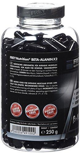 Frey Nutrition Beta-Alanin X2, 1er Pack 250g