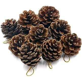 Morning-May-Weihnachten-Tannenzapfen-Dekoration-Kugeln-12-PCS-Xmas-Tree-Party-Zum-Aufhngen-Dekoration-Ornament-mit-Kordel-fr-Das-Handwerk-Home-Decor-aus-Digital-Art