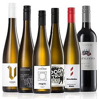 GEILE-WEINE-Weinpaket-Weiwein-6-x-075-Probierpaket-mit-Weisswein-von-Winzern-aus-Deutschland-und-Italien-fr-jeden-Geschmack