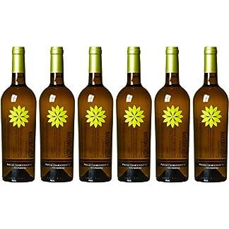Ognissole-Chardonnay-Puglia-IGT-2016-6-x-075-l