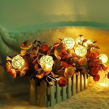 GEEDIAR-20-Rattan-Ball-Lichterkette-String-Lights-Batteriebetrieben-fr-Hochzeit-Geburtstag-Party-Weihnachtsdeko-22-m-Warm-Wei