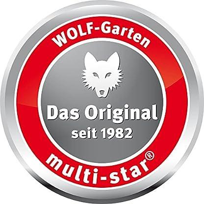 WOLF-Garten-multi-star-Aluminium-D-Stiel-ZM-AD-3943062
