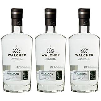 Walcher-Williams-Christ-Birnenbrand-3-x-07-l