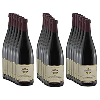 350-ltr-Wein-Trollinger-Lemberger-2016-Leingartener-Grafenberg-18×1-Liter