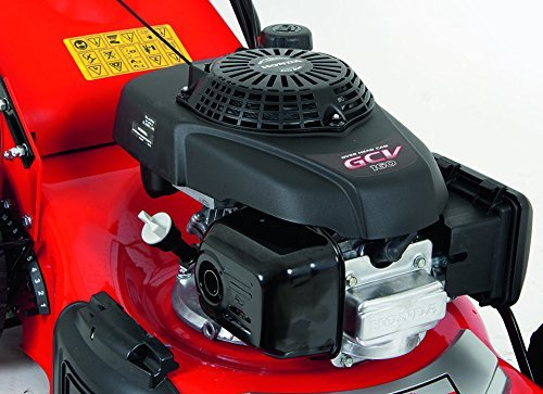 Grizzly-Benzin-Rasenmher-mit-HONDA-Motor-46-cm-Schnittbreite-Stabile-Stahlkonstruktion