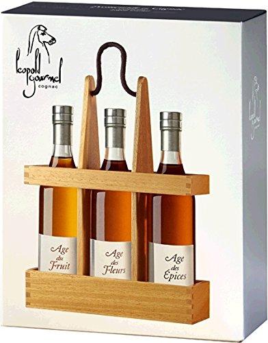 Cognac-Lopold-Gourmel-SA-je-1-Fl-ge-du-Fruit-Fleur-pices-3-x-02-l